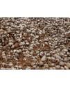 Brichete nuca de cocos 20 Kg