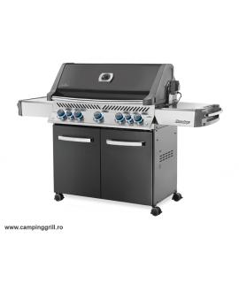 Garden grill Prestige 665